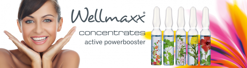 Wellmaxx Concentrates